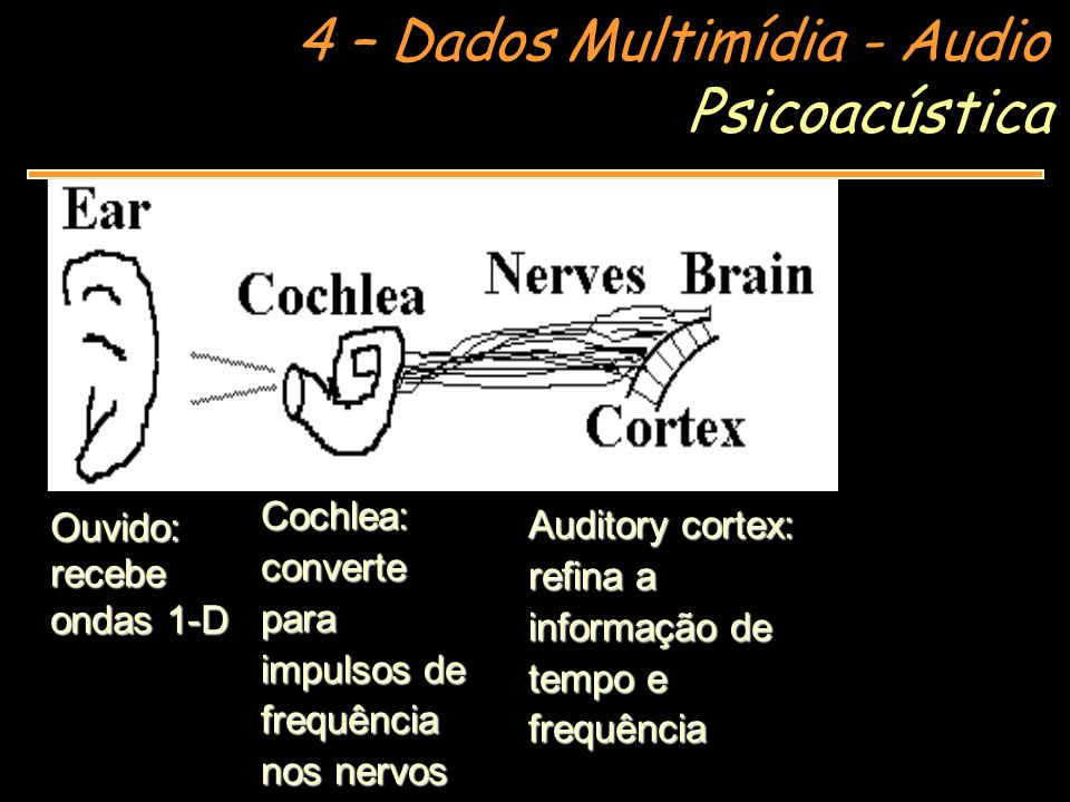 Psicoacústica Cochlea: converte para impulsos de frequência nos nervos