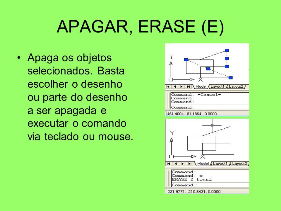 APAGAR, ERASE (E)