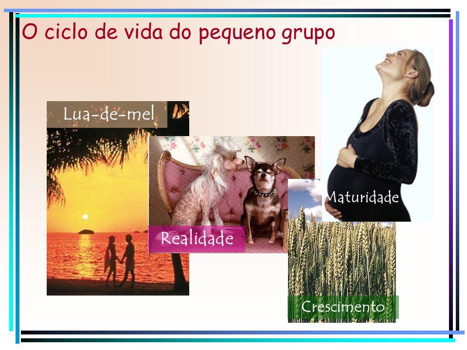 O ciclo de vida do pequeno grupo