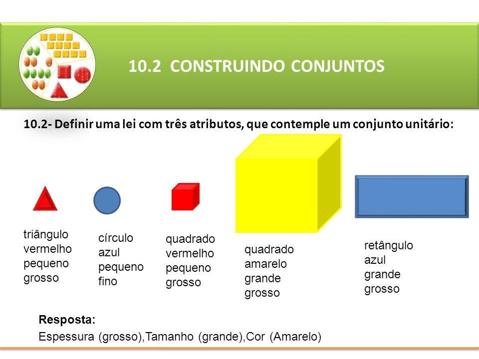 10.2 CONSTRUINDO CONJUNTOS