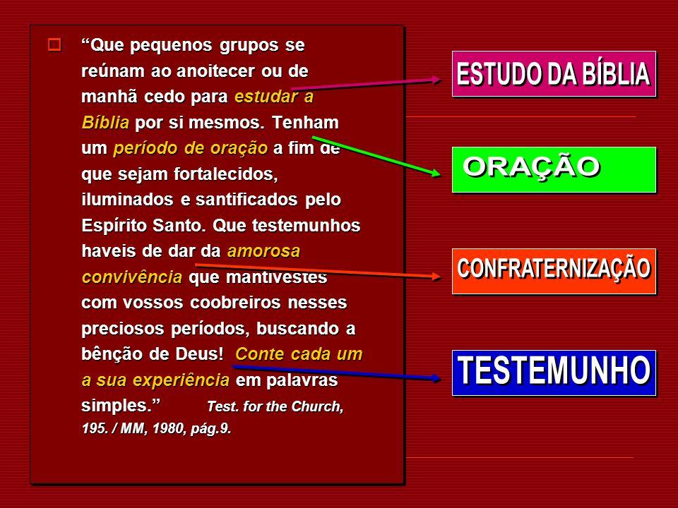 ESTUDO DA BÍBLIA ORAÇÃO CONFRATERNIZAÇÃO TESTEMUNHO