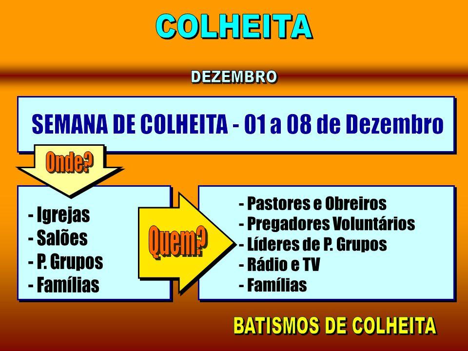 SEMANA DE COLHEITA - 01 a 08 de Dezembro