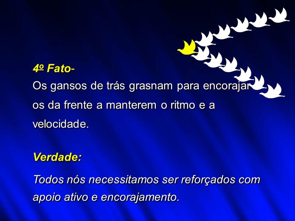 4o Fato- Os gansos de trás grasnam para encorajar. os da frente a manterem o ritmo e a. velocidade.