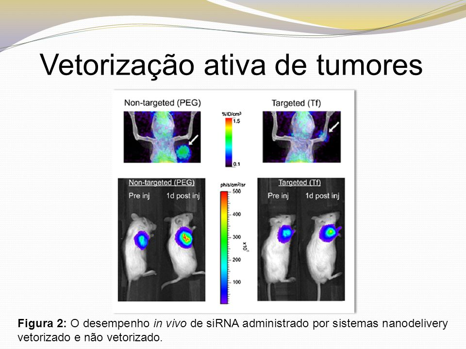 Vetorização ativa de tumores