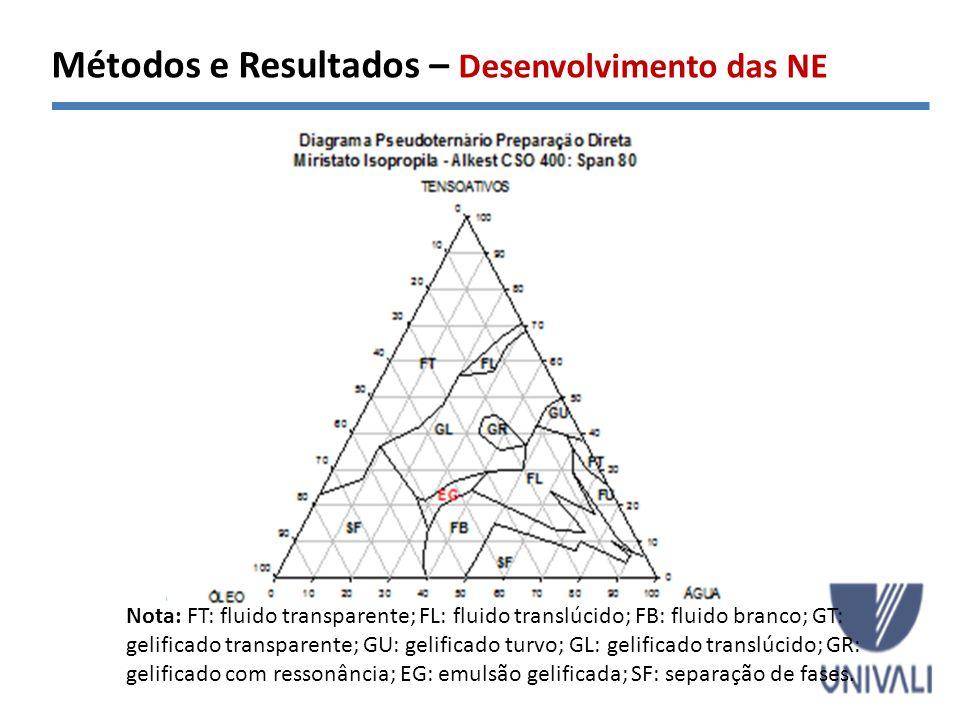 Métodos e Resultados – Desenvolvimento das NE