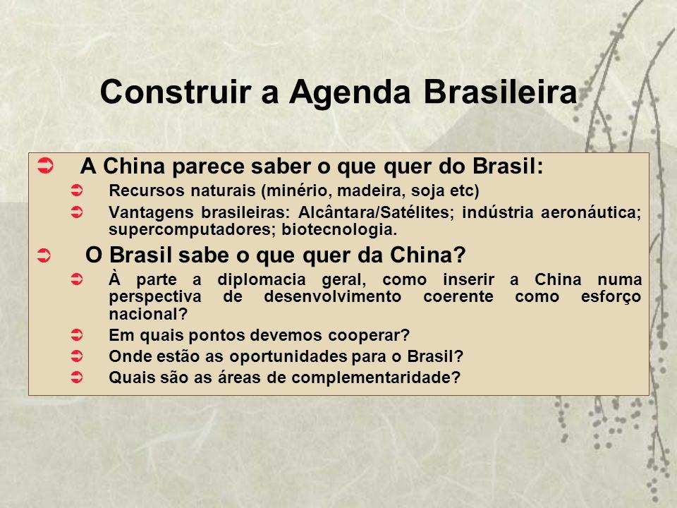 Construir a Agenda Brasileira
