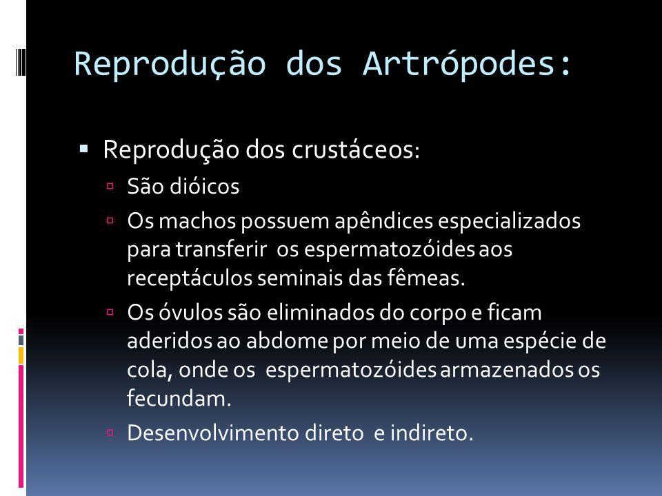 Reprodução dos Artrópodes: