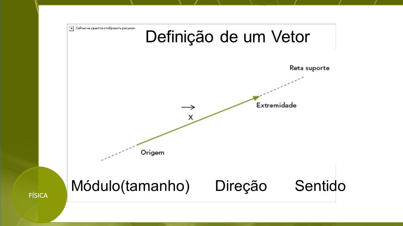 Definição de um Vetor Módulo(tamanho) Direção Sentido FÍSICA