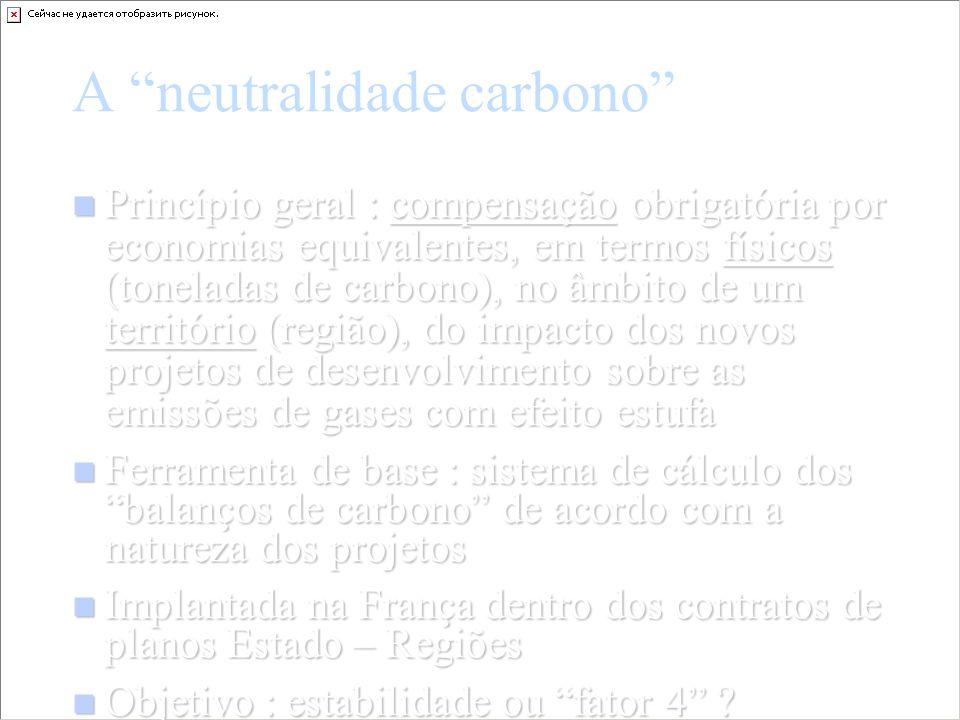 A neutralidade carbono