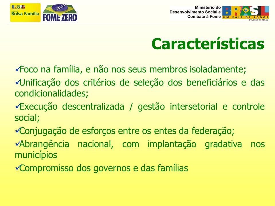 Características Foco na família, e não nos seus membros isoladamente;