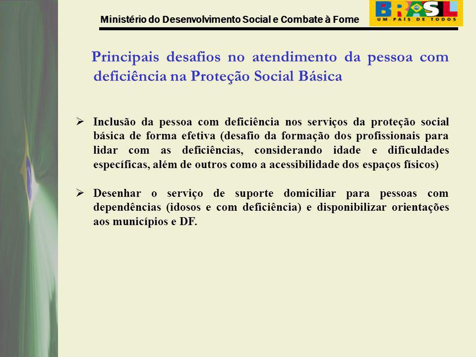Principais desafios no atendimento da pessoa com deficiência na Proteção Social Básica