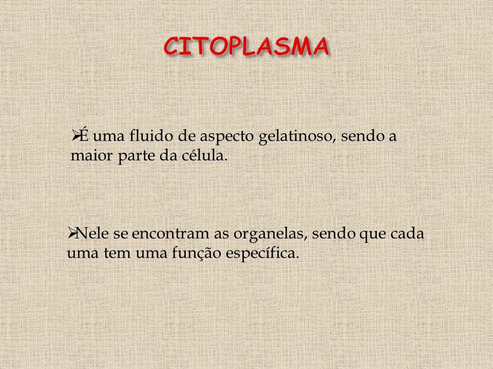 CITOPLASMA É uma fluido de aspecto gelatinoso, sendo a maior parte da célula.