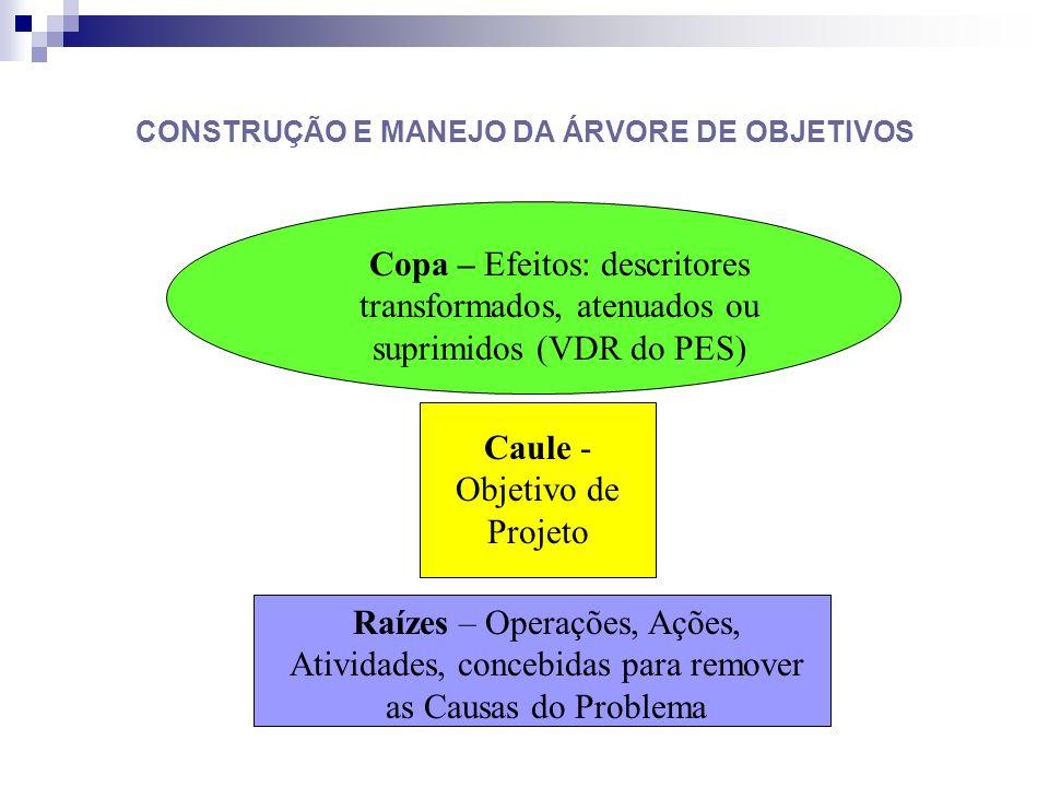 CONSTRUÇÃO E MANEJO DA ÁRVORE DE OBJETIVOS