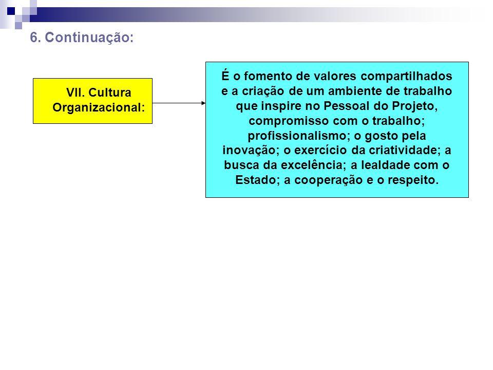VII. Cultura Organizacional: