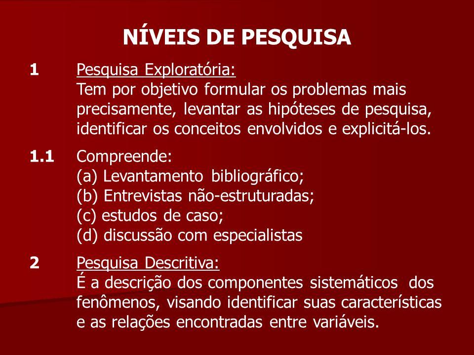 NÍVEIS DE PESQUISA 1 Pesquisa Exploratória: