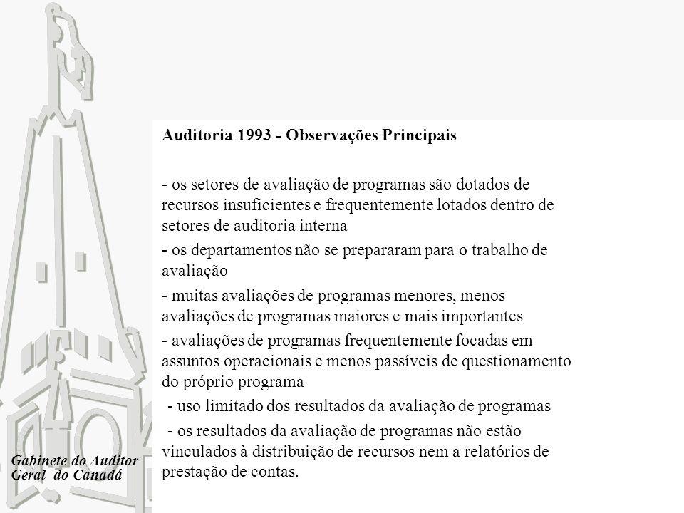Auditoria 1993 - Observações Principais