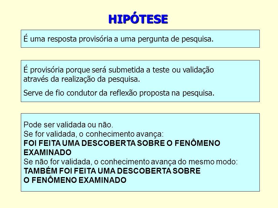 HIPÓTESE É uma resposta provisória a uma pergunta de pesquisa.