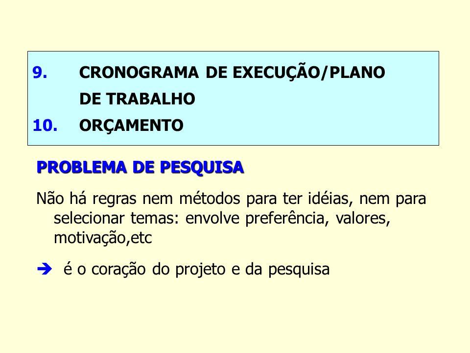 9. CRONOGRAMA DE EXECUÇÃO/PLANO