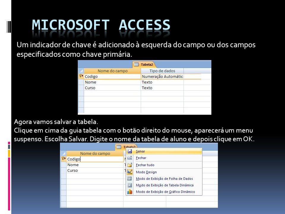 Microsoft access Um indicador de chave é adicionado à esquerda do campo ou dos campos especificados como chave primária.