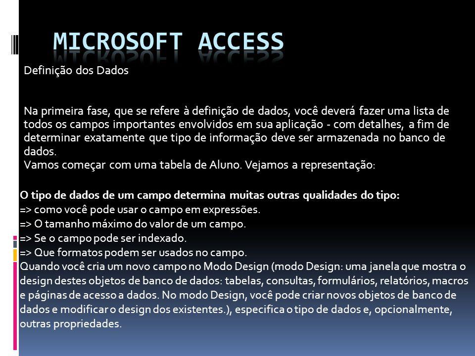 Microsoft access Definição dos Dados