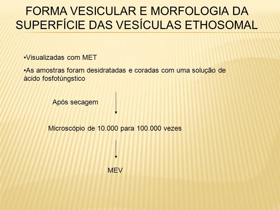 FORMA VESICULAR E MORFOLOGIA DA SUPERFÍCIE DAS VESÍCULAS ETHOSOMAL