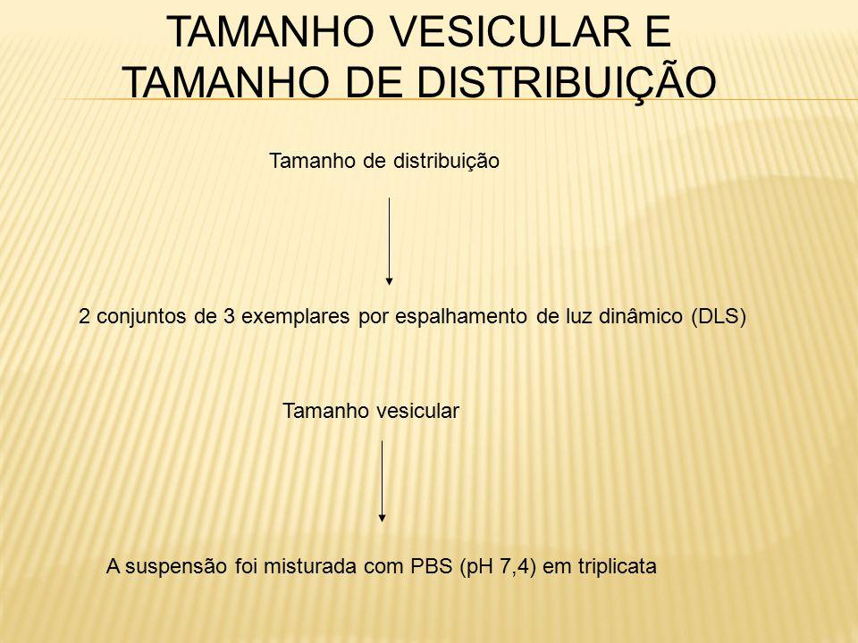 TAMANHO VESICULAR E TAMANHO DE DISTRIBUIÇÃO
