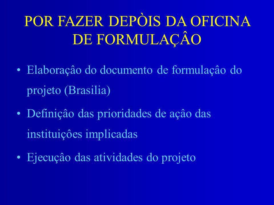 POR FAZER DEPÒIS DA OFICINA DE FORMULAÇÂO