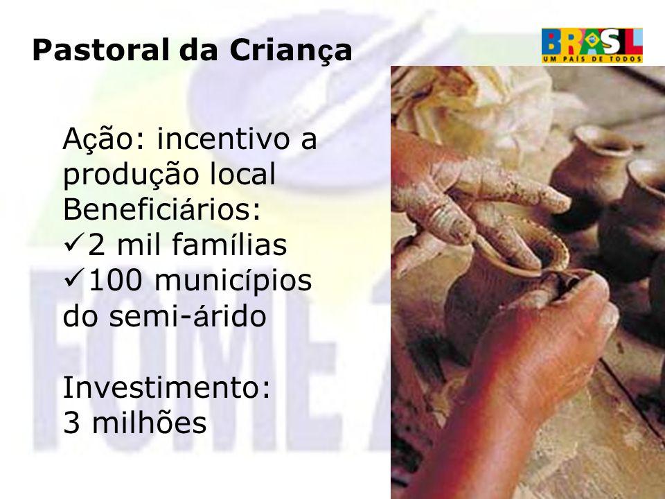 Pastoral da Criança Ação: incentivo a produção local. Beneficiários: 2 mil famílias. 100 municípios do semi-árido.