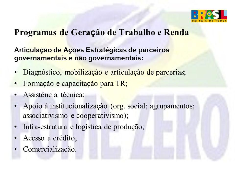 Programas de Geração de Trabalho e Renda Articulação de Ações Estratégicas de parceiros governamentais e não governamentais: