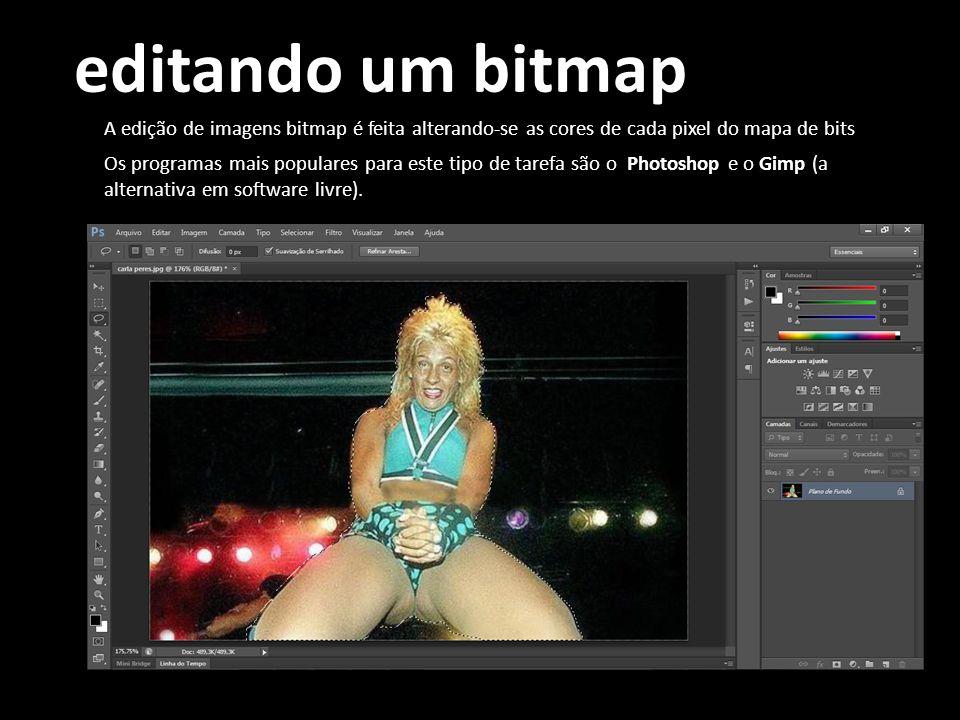 editando um bitmap A edição de imagens bitmap é feita alterando-se as cores de cada pixel do mapa de bits.