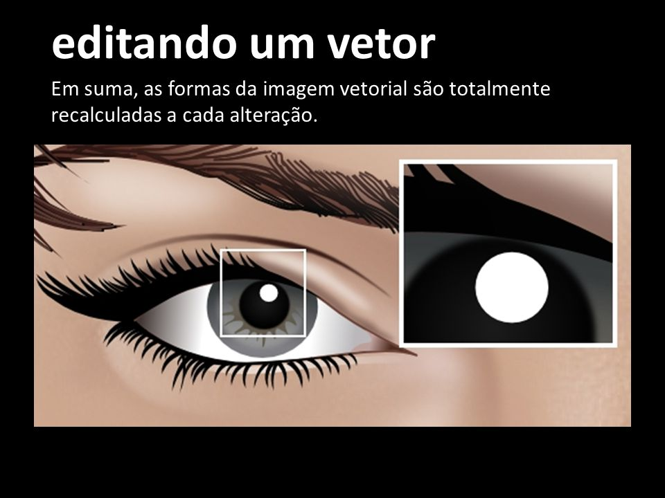 editando um vetor Em suma, as formas da imagem vetorial são totalmente recalculadas a cada alteração.