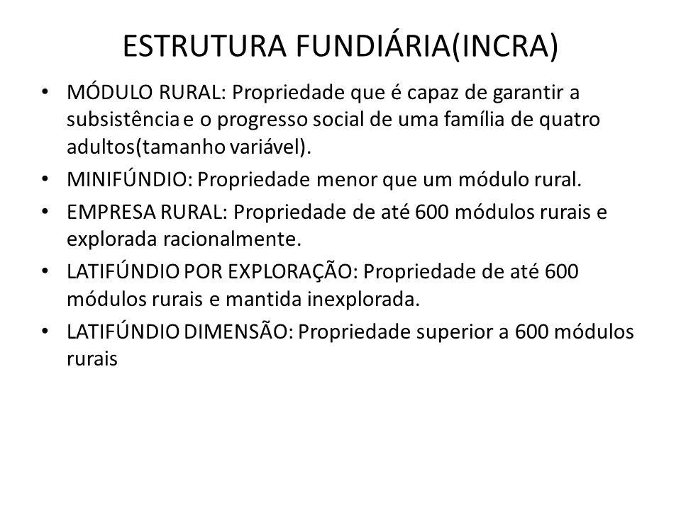 ESTRUTURA FUNDIÁRIA(INCRA)