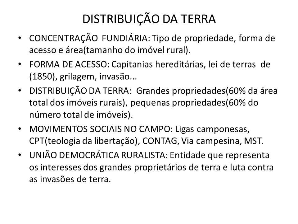 DISTRIBUIÇÃO DA TERRA CONCENTRAÇÃO FUNDIÁRIA: Tipo de propriedade, forma de acesso e área(tamanho do imóvel rural).