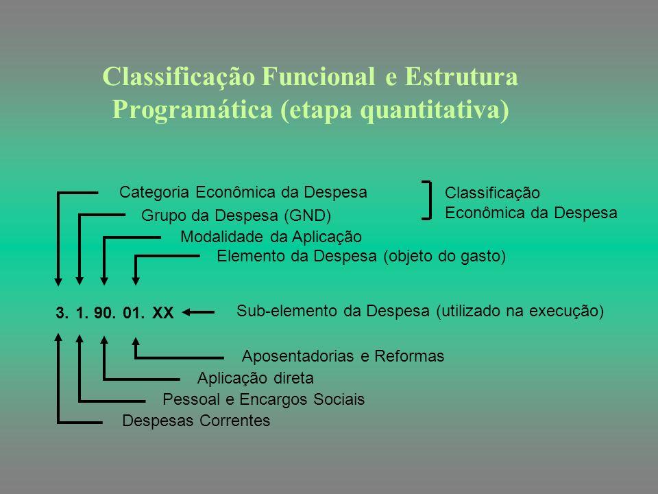 Classificação Funcional e Estrutura Programática (etapa quantitativa)
