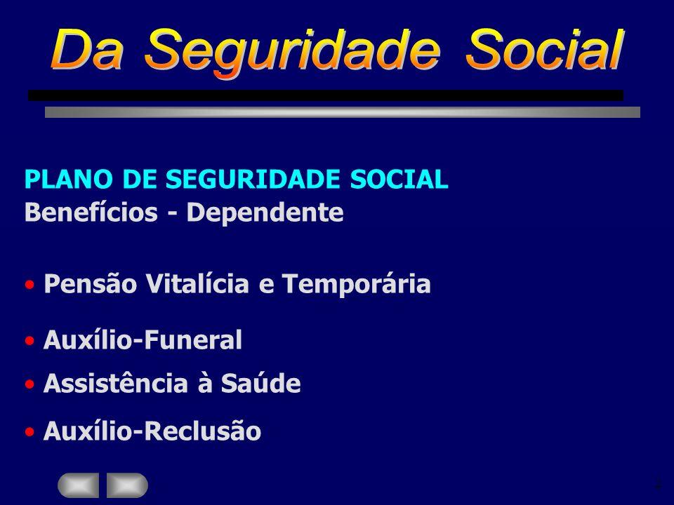 Da Seguridade Social PLANO DE SEGURIDADE SOCIAL