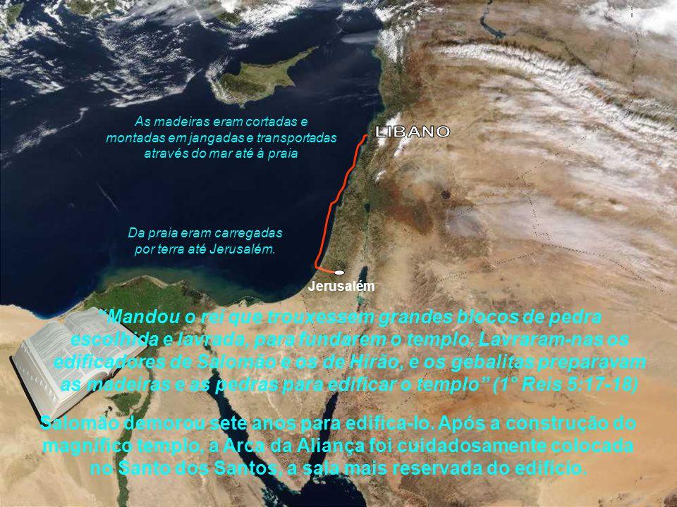 Da praia eram carregadas por terra até Jerusalém.