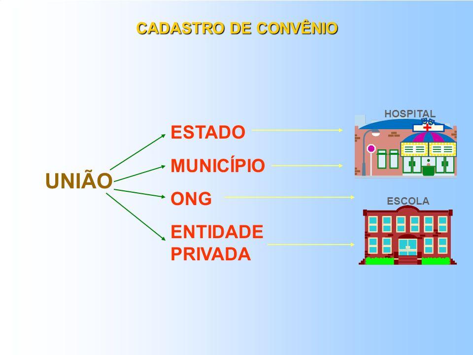 UNIÃO ESTADO MUNICÍPIO ONG ENTIDADE PRIVADA CADASTRO DE CONVÊNIO +