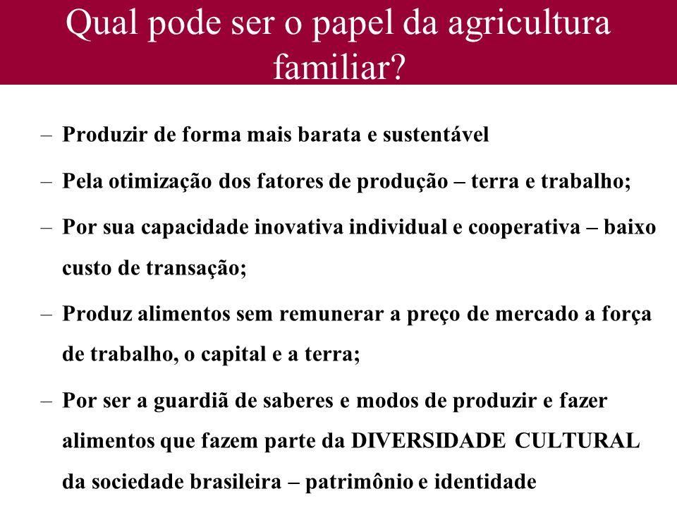 Qual pode ser o papel da agricultura familiar