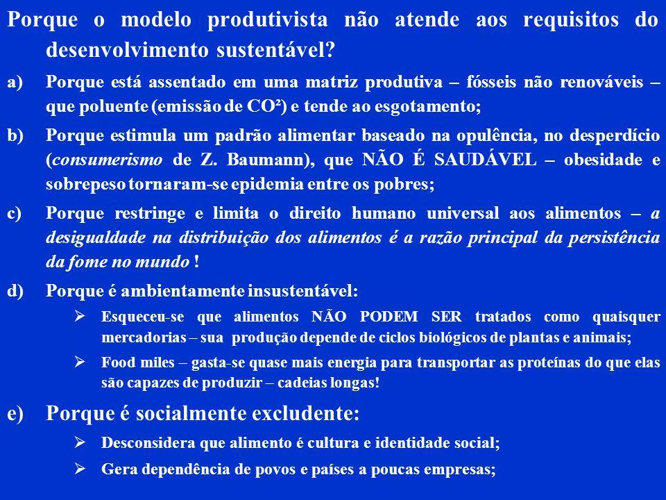 Porque o modelo produtivista não atende aos requisitos do desenvolvimento sustentável