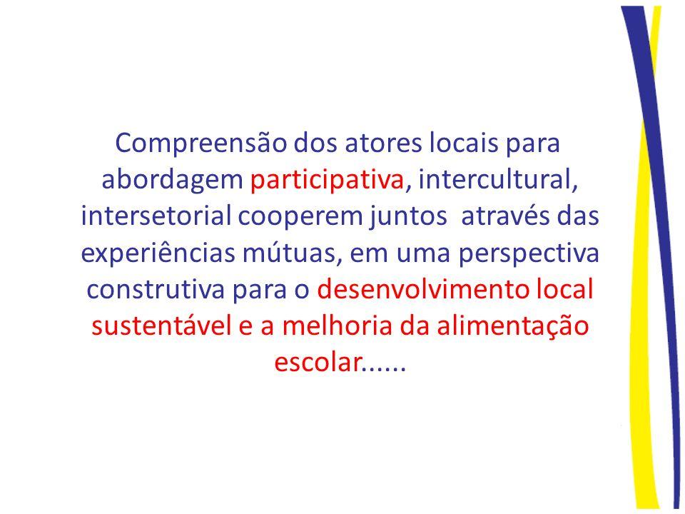 Compreensão dos atores locais para abordagem participativa, intercultural, intersetorial cooperem juntos através das experiências mútuas, em uma perspectiva construtiva para o desenvolvimento local sustentável e a melhoria da alimentação escolar......
