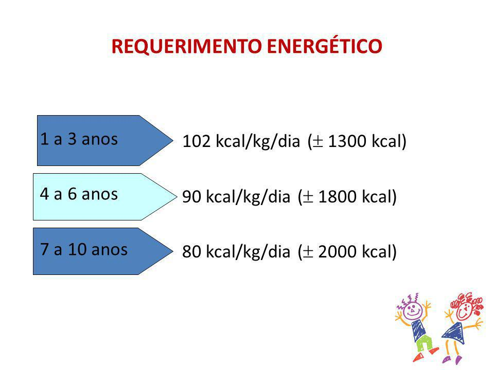 REQUERIMENTO Energético