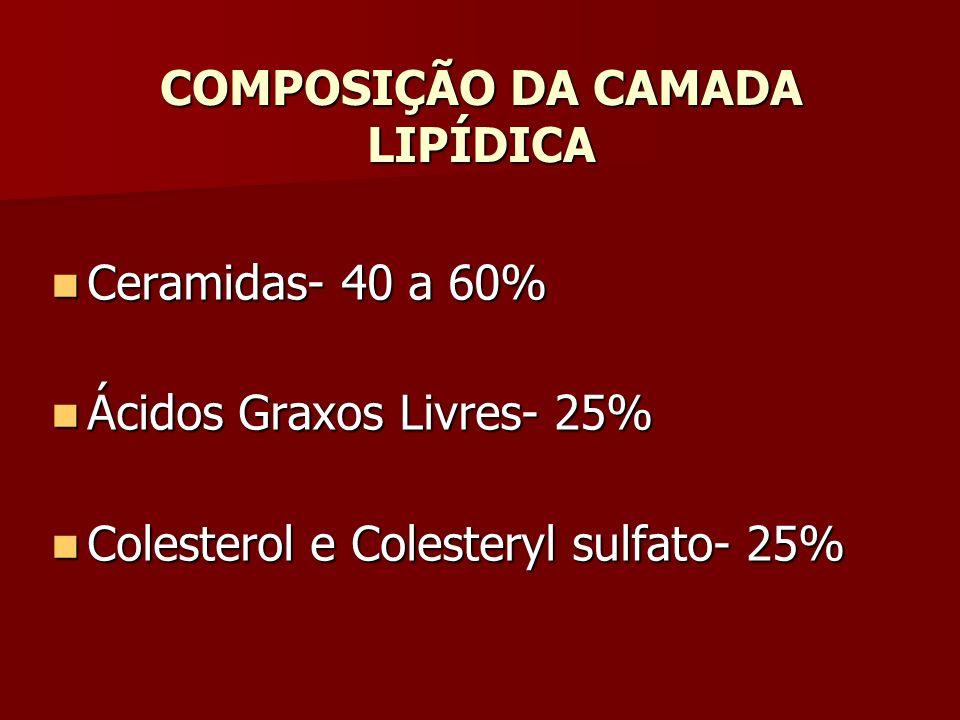 COMPOSIÇÃO DA CAMADA LIPÍDICA