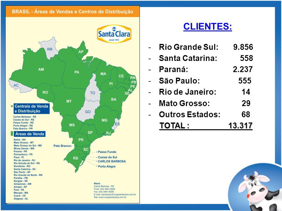 CLIENTES: Rio Grande Sul: 9.856 Santa Catarina: 558 Paraná: 2.237