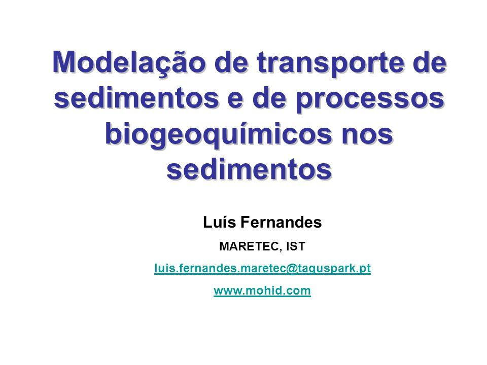 Modelação de transporte de sedimentos e de processos biogeoquímicos nos sedimentos