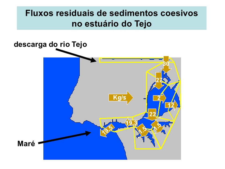 Fluxos residuais de sedimentos coesivos no estuário do Tejo