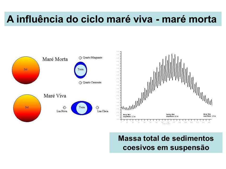 Massa total de sedimentos coesivos em suspensão
