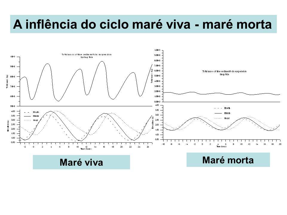 A inflência do ciclo maré viva - maré morta