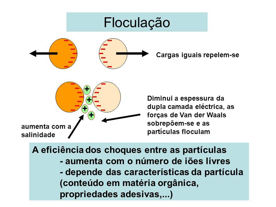 Floculação + A eficiência dos choques entre as partículas