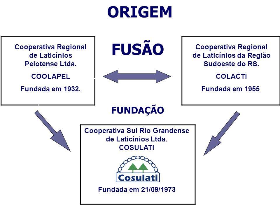 ORIGEM Cooperativa Regional de Laticínios Pelotense Ltda. COOLAPEL. Fundada em 1932. Cooperativa Regional de Laticínios da Região Sudoeste do RS.