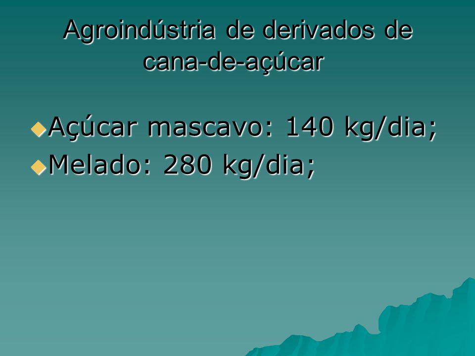 Agroindústria de derivados de cana-de-açúcar